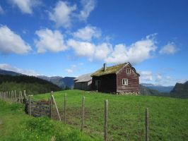 This is life - Norway II by boringzoo