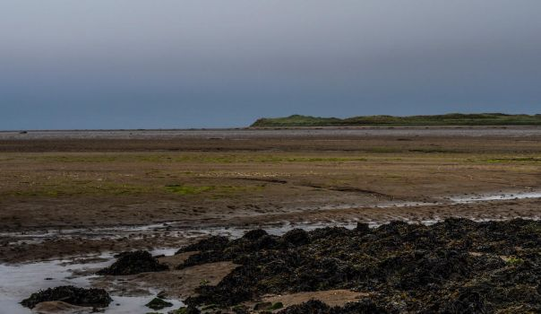 Causeway to Lindisfarne. England. by jennystokes
