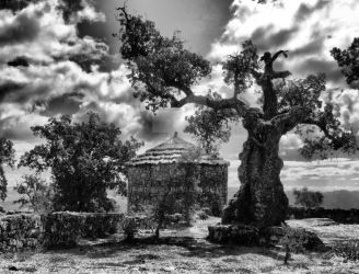 Proto-historic settlement of Briteiros by vmribeiro