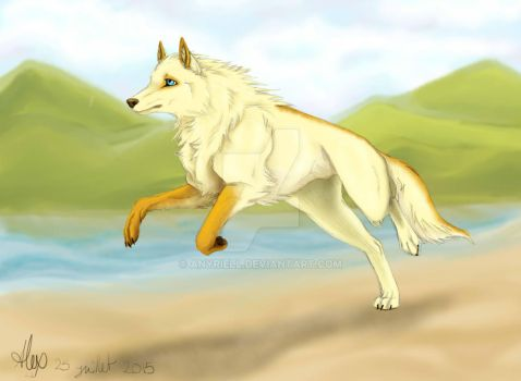 Running Wolf by Anyriell