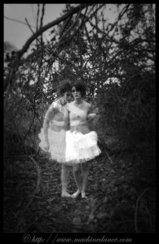 if only holga was our eyes by starlitziggy