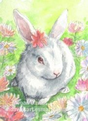 Flower Bunny ACEO by Pannya