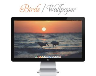 Birds Wallpaper by bokehlicia