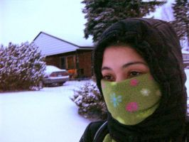 Another Winter Day by yazmin