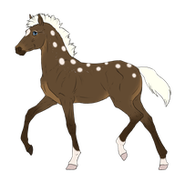 N3212 Padro Foal Design by casinuba