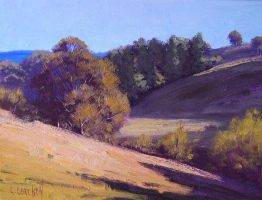 Summer Trees by artsaus