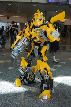 Bumblebee Fanime 2009 by cityoffog