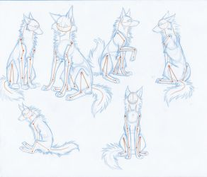 HowToDrawWolves: SittingPoses by Kimai