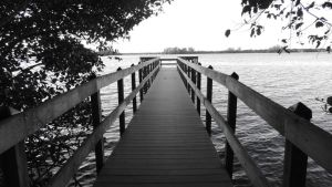 Pier by EricaGriswold