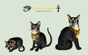Adopt - Egyptian Abyssinian by elen89