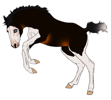 TB Lineage Foal Auction *SOLD* by angry-horse-for-life