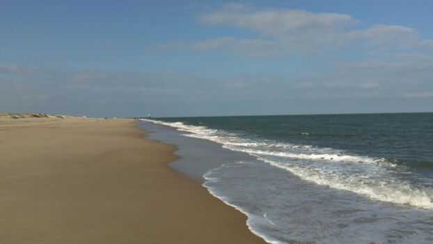 Cape Henlopen Beach by Bennuendo