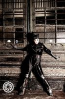 Catwoman --  Cornered by Lisa-Lou-Who