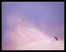 Feather 2 by Alexandra35