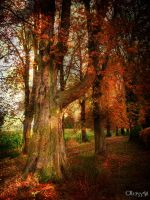 welcome autumn by Weissglut