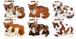 Oskar x Apricot litter - CLOSED by MlSTY-ADOPTS