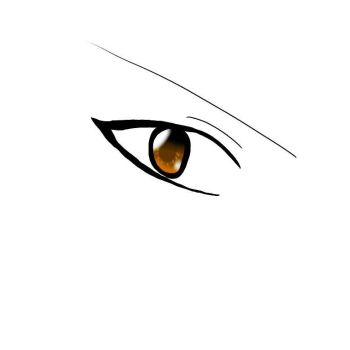 Author's eye by Author-Chan11