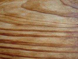 Wood Grain Texture 4 by FantasyStock