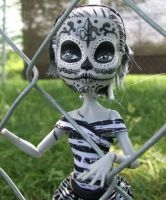 Monster High Custom Frankie Stein DOTD Doll by AdeCiroDesigns