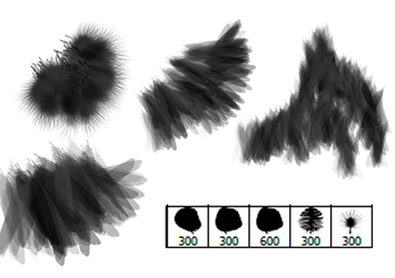 Bird Feather Brushes by Mintoons