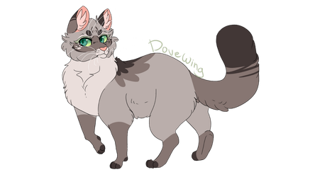 Dovewing by Re-dez
