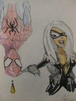 Spidey and Blackcat by sTiLLbROWN84