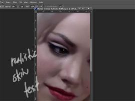 Realistic Skin Texture Photoshop Brushes by whin