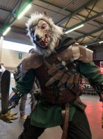 Worgen @ FACTS 2012 by KillingRaptor