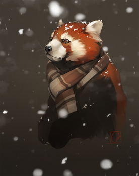 first snow by GaudiBuendia