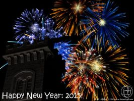 Happy New Year: 2015! by Norski