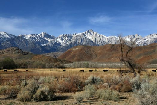 Sierra Front and Alabama Hills, near Lone Pine, CA by RichardEly