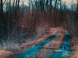 Newly Formed Creek - Wider view by KBeezie