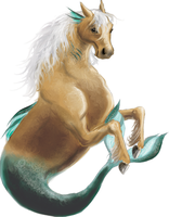 sea horse by pickledshoe