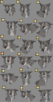 Nimbus Expression Chart by FrostedCanid
