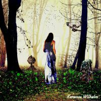 THE PATH UNKNOWN by KerensaW
