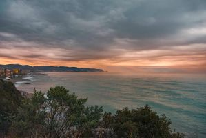 Golden Coast by Ragnarokkr79