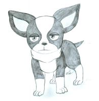 Iggy Pencil Drawing by BagelofTime