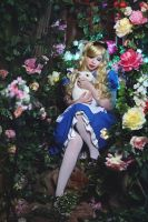 Alice in Wonderland by AnnaProvidence