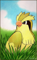 Shiny Pidgey by Phoelion