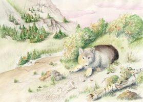 Wolf in the Den by arikla