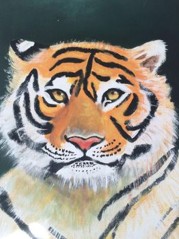 The tiger  by stark1610