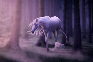 the last unicorn by alimarije