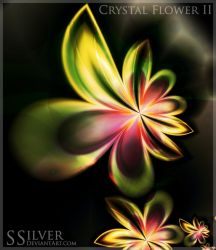 ...::: Crystal Flower II :::.. by SSilver