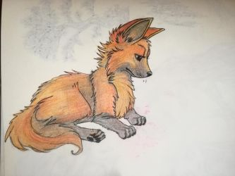 Maned wolf pup by Red-Foxie
