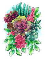 Snail and succulents by KaceyMeg
