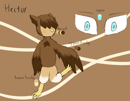Hector ref by coolbaby67382