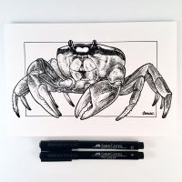 Inktober Day 18 - Crab by D-MAC