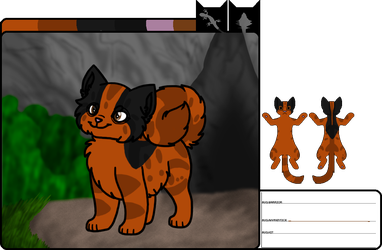 [wb]Cinderpaw|apprentice by millemusen