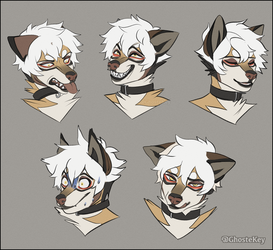 N Expressions by GhosteKey