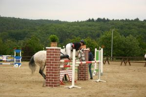 Show Jumping Refusal - Rider hits Wall by LuDa-Stock